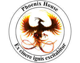 house-system_-phoenix-house